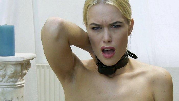 Shock Electro Collar Challenge