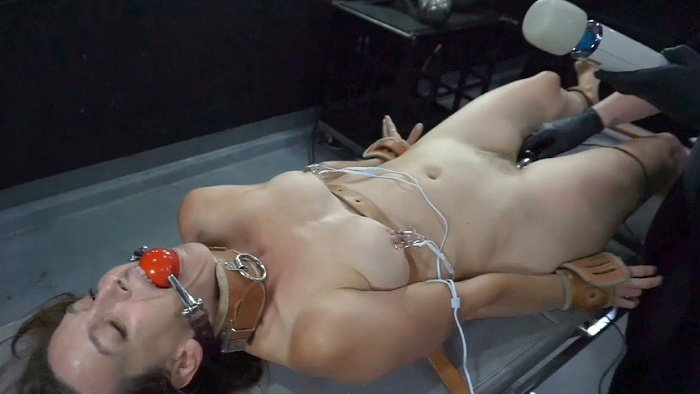 Let it Out Electro Dildo and Nipple Clamps