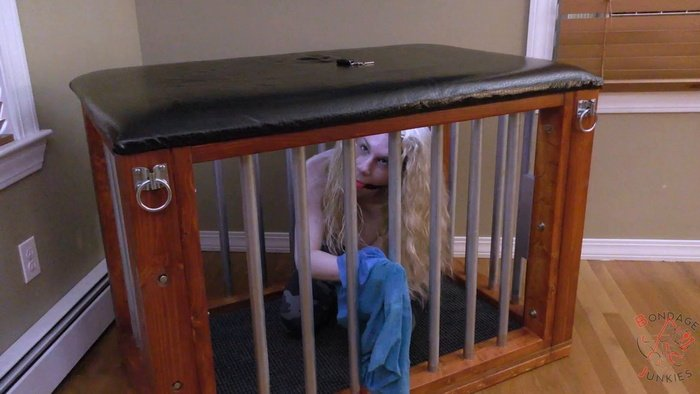 Peach in handcuffs with a ballgag to mouth may be spending the night in the cage
