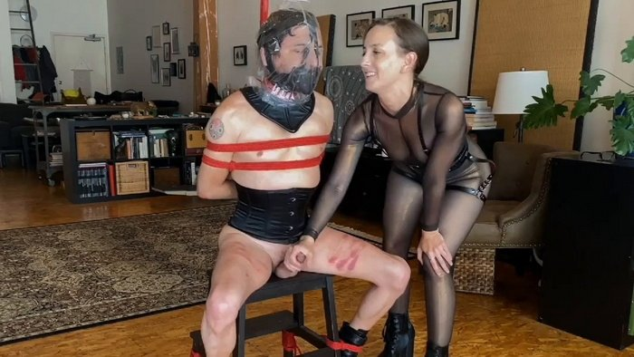Neck corset and muzzle for a Kino tied up on chair
