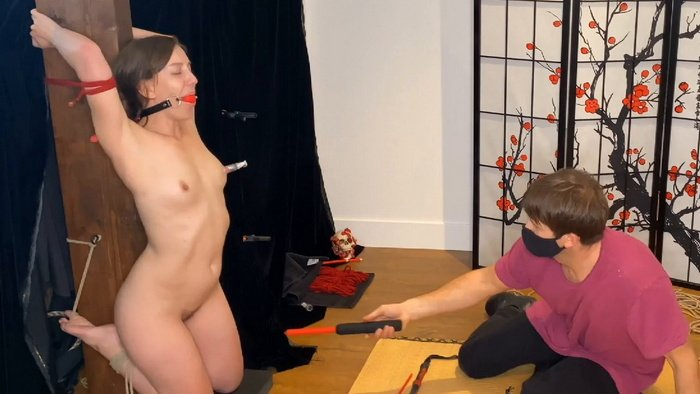 Cattle prod, shocker and electro nipple clamps for tied up Elise