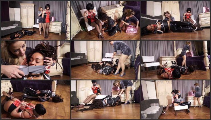 Bodyguard and inventor helpless, tied up and ballgagged
